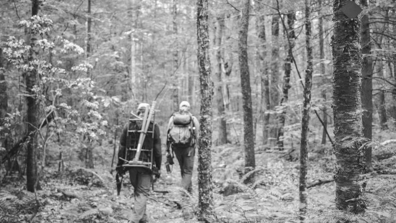 Hiking with tools on trail in forest