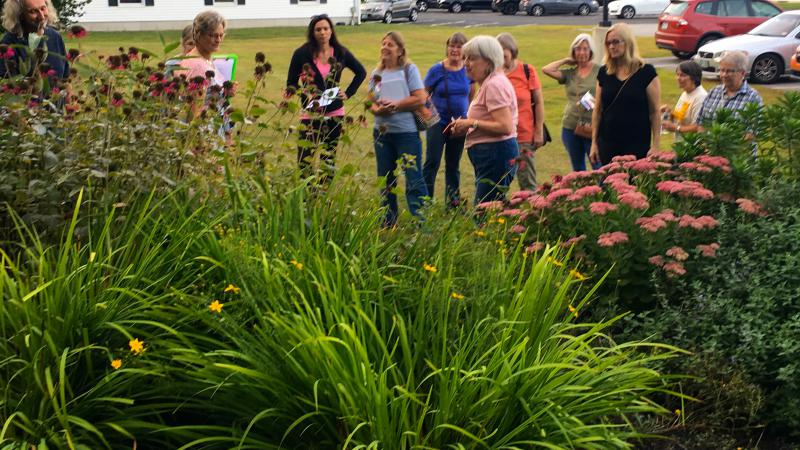 Volunteers learning about Pollinator Plants