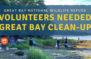 Great Bay National Wildlife Refuge Shore Clean Up advertisement