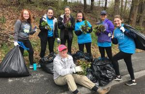 Garlic Mustard Pulling UNH Students
