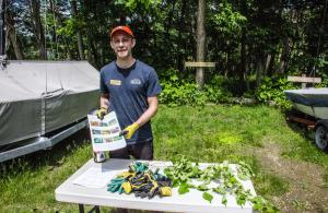 Invasive Plant Volunteer