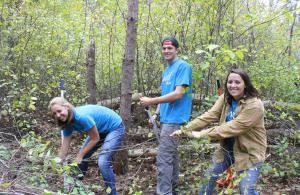 UNH Students Pulling Buckthorn