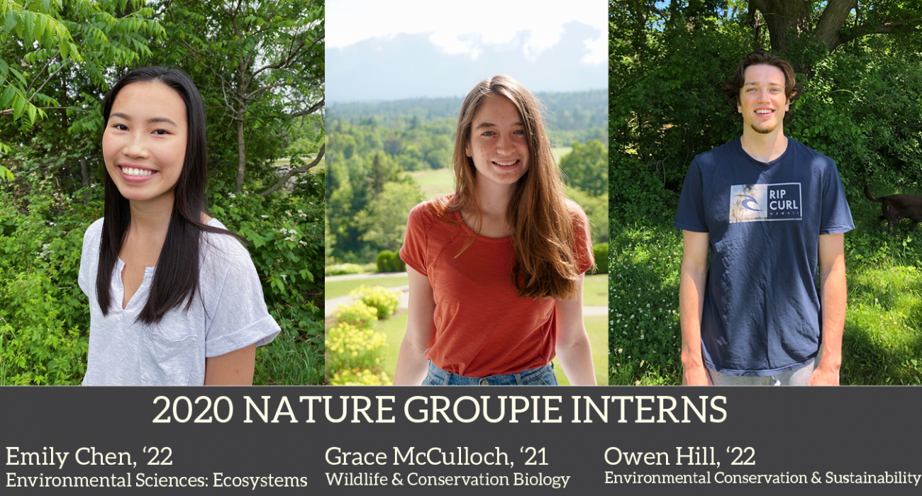 2020 Nature Groupie Interns all together corrected