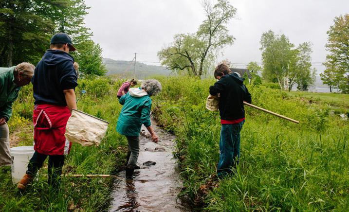 Stream AWWA bioblitz action