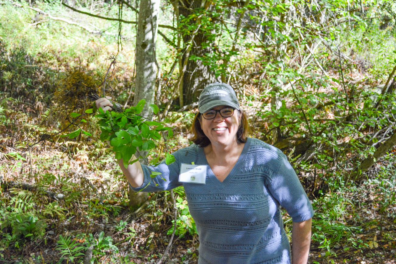 Volunteers pull invasive plants during the NH Invasives Academy