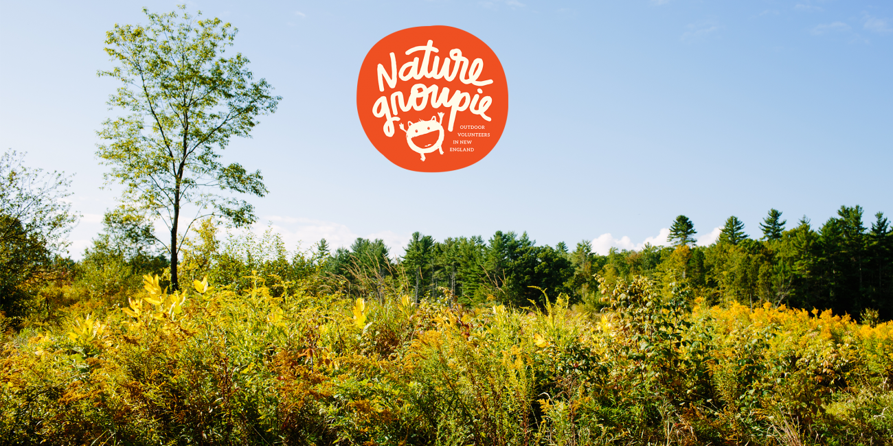 Field with Nature Groupie logo