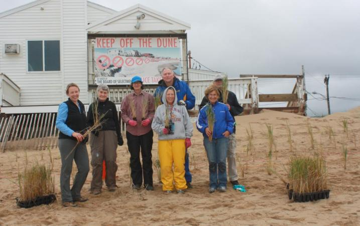 Beachgrass volunteer planting crew on Plum Island.