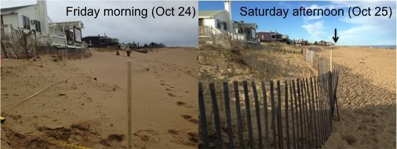 Before and After: two days of beachgrass planting