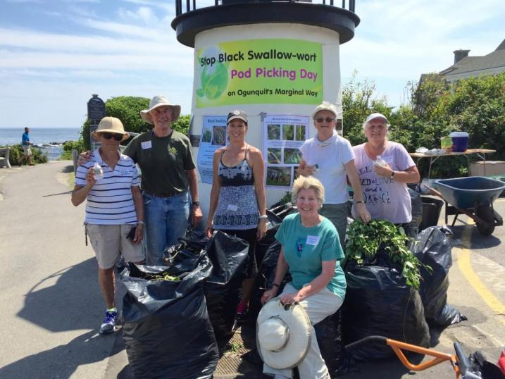 volunteers with bags of invasives