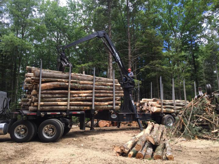 Timber harvest truck with SELT