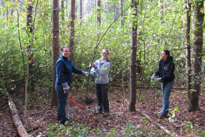 Buckthorn Blitz 3 students