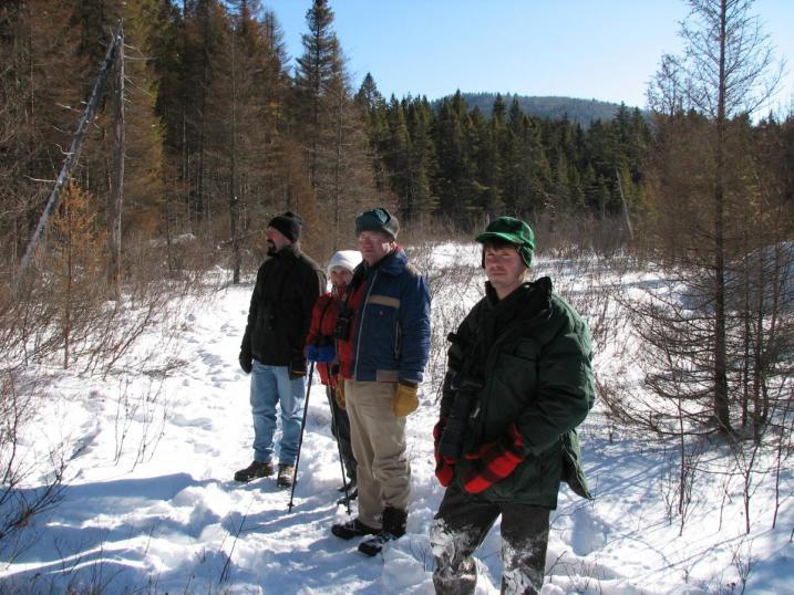 birders out looking for woodpeckers in winter
