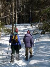 volunteers snowshoeing